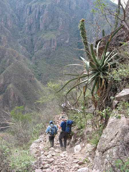 Hiking in Copper Canyon